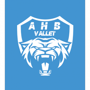 ASSOCIATION HANDBALL VALLET